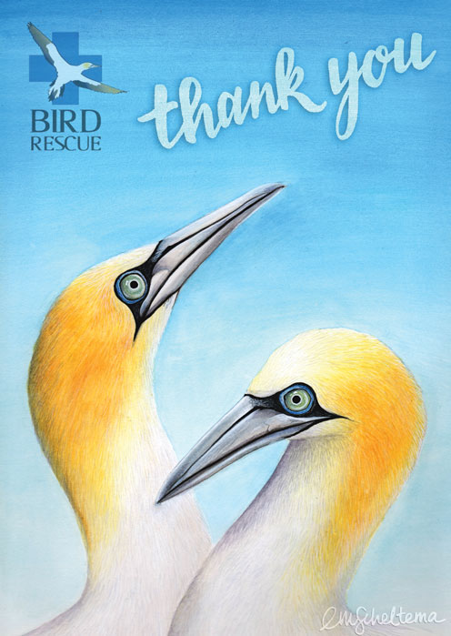 final-thankyou-gannet-card-cmyk