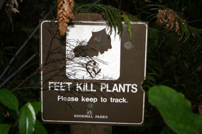 feet-kill-plants