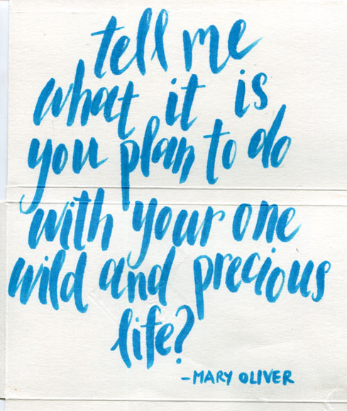 mary-oliver-quote030-web