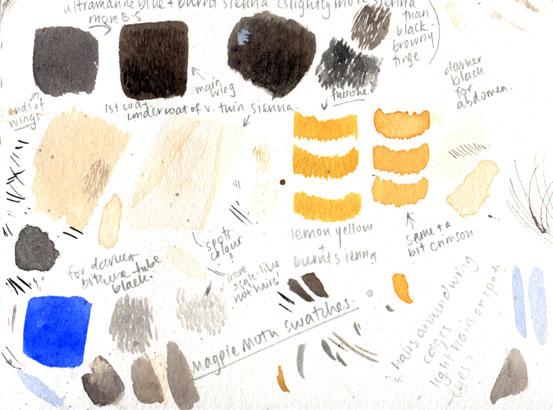 palette-swatch_magpie-moths006