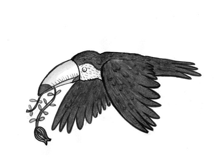 toucan_3009_crappy-paper