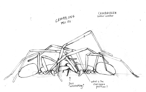 first sketch concept of two spiders fighting